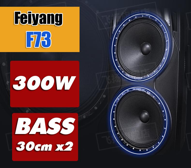 Loa kéo di động Feiyang F73